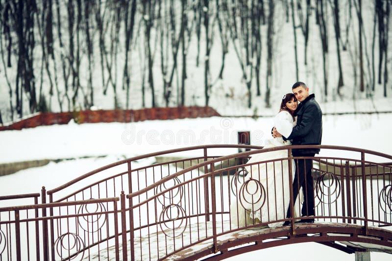 Nygifta personer poserar på bron över ett dolt med snösjön arkivfoton