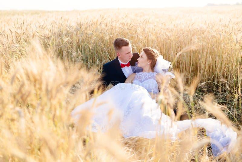 Nygifta personer som poserar i kornfält royaltyfri bild