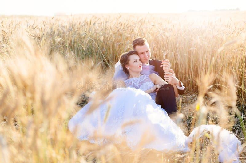 Nygifta personer som poserar i kornfält royaltyfri foto