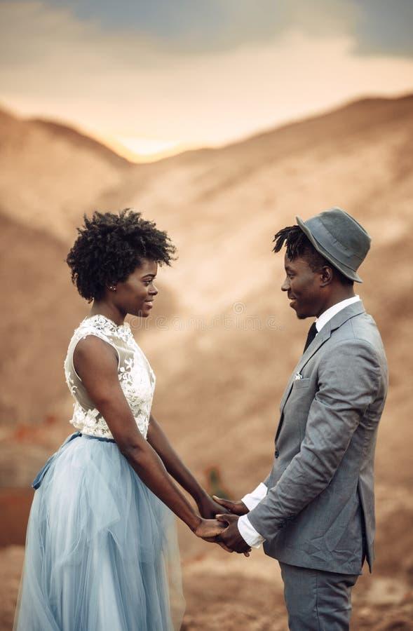 Nygifta personer står och rymmer händer i kanjon mot härligt landskap royaltyfria foton