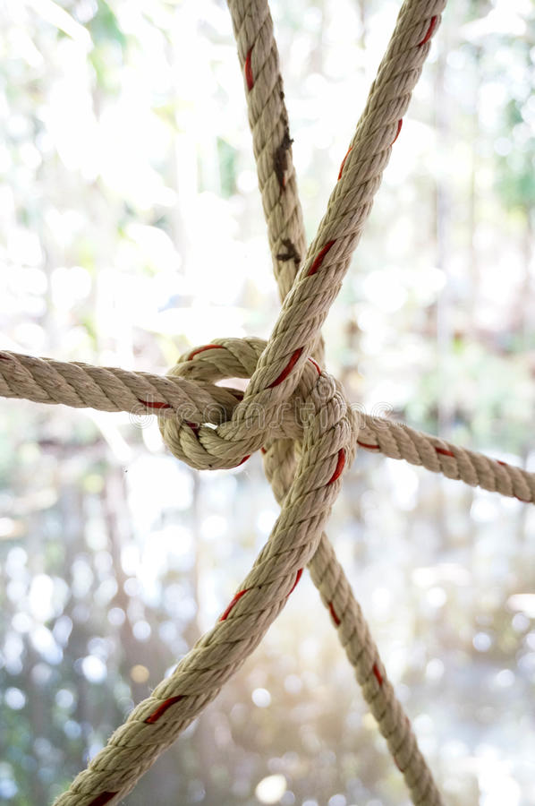 Nylon rope knot. On blur background royalty free stock photos