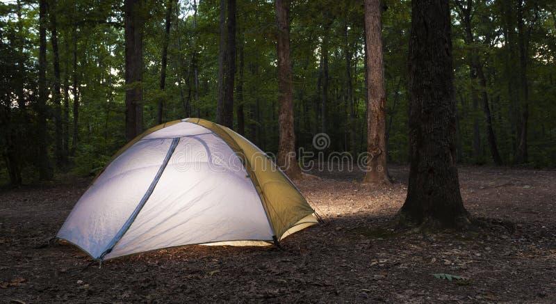 Nylon tent in een donker bos dat een licht binnen heeft stock afbeeldingen