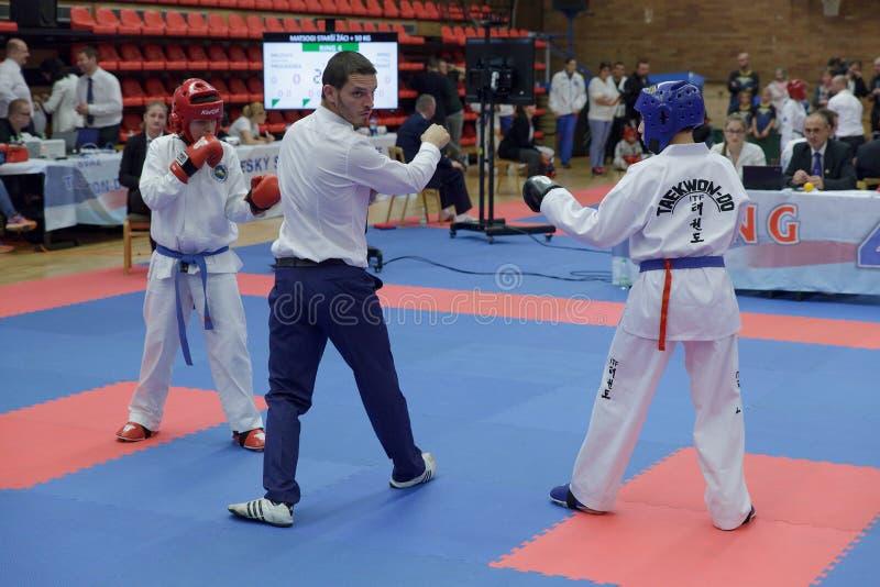 Nymburk, republika czech, Listopad 4 2017: Mistrzostwo republika czech Taekwondo ITF w Nymburk, republika czech Młody Taekwondo zdjęcie royalty free