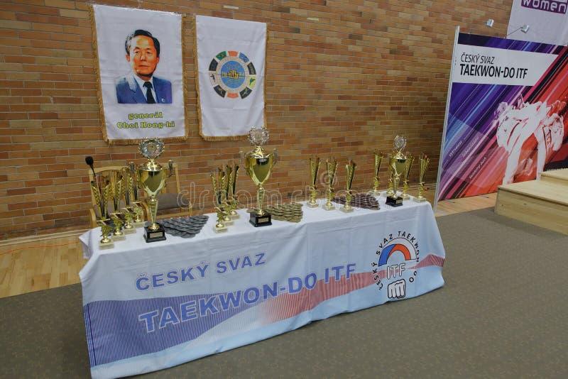 Nymburk, Tsjechische Republiek, 4 November 2017: Kampioenschap van het Taekwondo ITF van de Tsjechische Republiek in Nymburk, Tsj stock fotografie