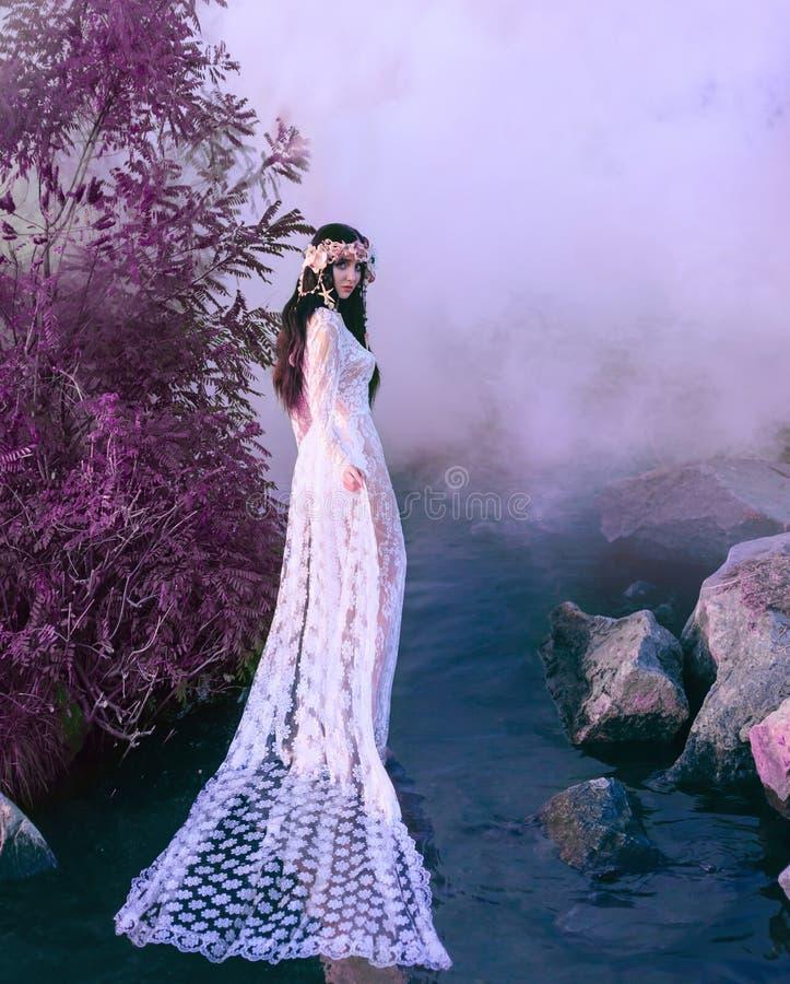 Nymphe incroyable, promenades dans l'eau au milieu de la rivière qui a été serrée par un brouillard épais et impénétrable là photographie stock
