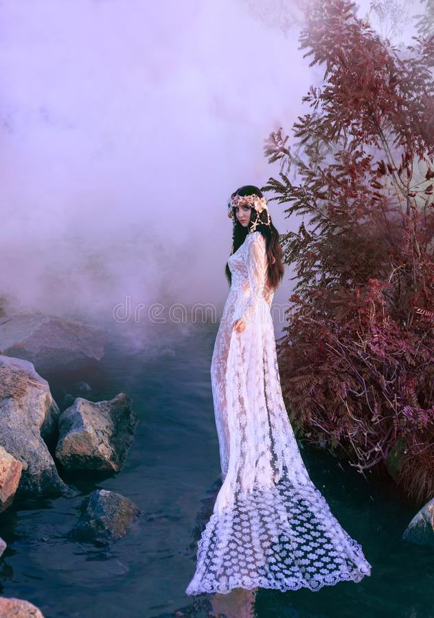 Nymphe incroyable, promenades dans l'eau au milieu de la rivière qui a été serrée par un brouillard épais et impénétrable là photo stock