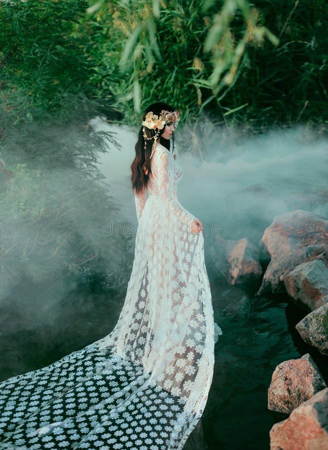 Nymphe incroyable, promenades dans l'eau au milieu de la rivière qui a été serrée par un brouillard épais et impénétrable E photographie stock
