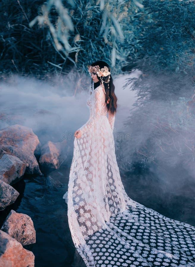 Nymphe incroyable, promenades dans l'eau au milieu de la rivière qui a été serrée par un brouillard épais et impénétrable E photo stock
