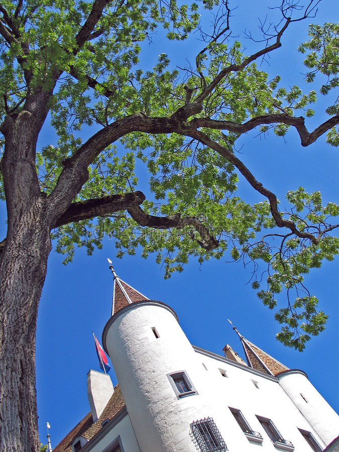 Free Nyon Castle And Tree Stock Image - 4931851