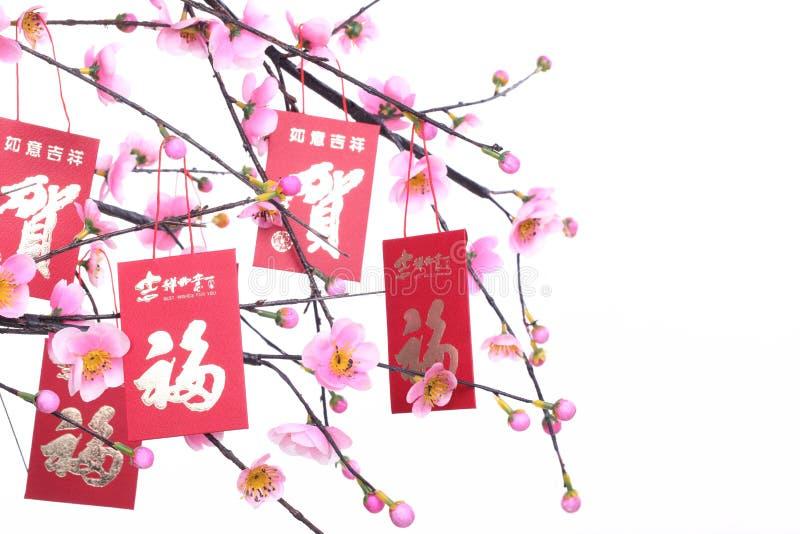 nytt år för kinesisk garnering royaltyfria foton