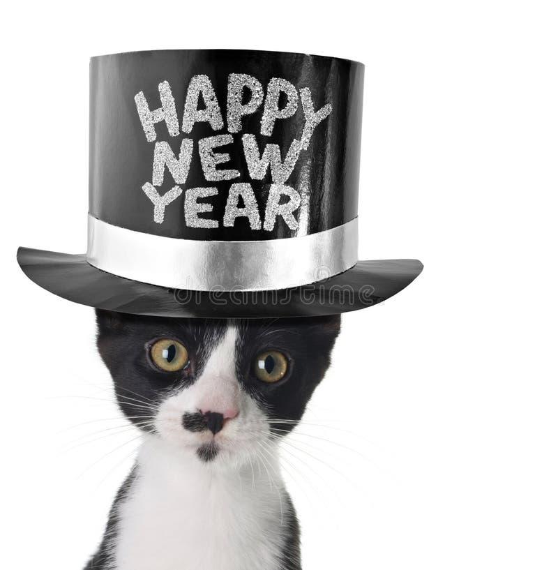 nytt år för lycklig kattunge