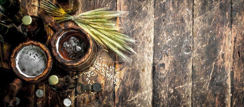 Nytt öl i ett trä rånar royaltyfri fotografi