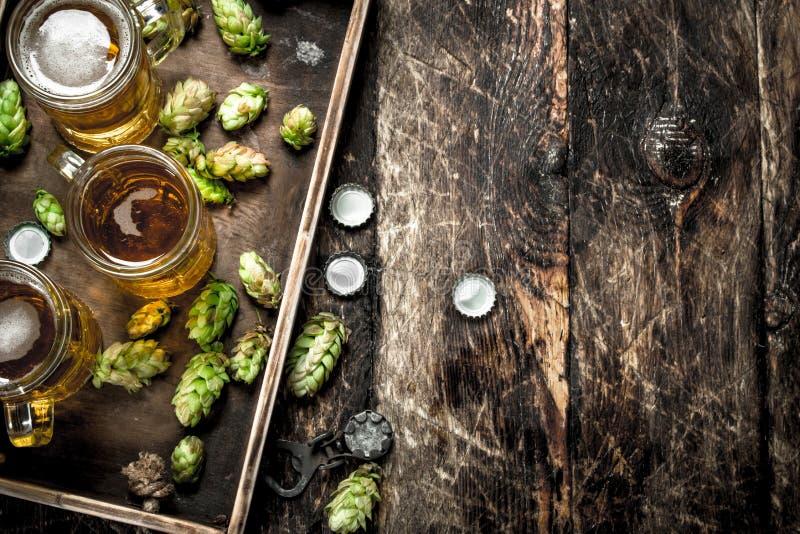 Nytt öl i exponeringsglas med gräsplan hoppar på ett gammalt magasin arkivbild