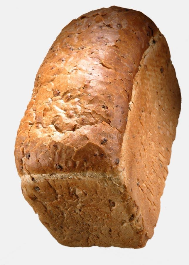 Nytt bakat släntra av bröd royaltyfria foton