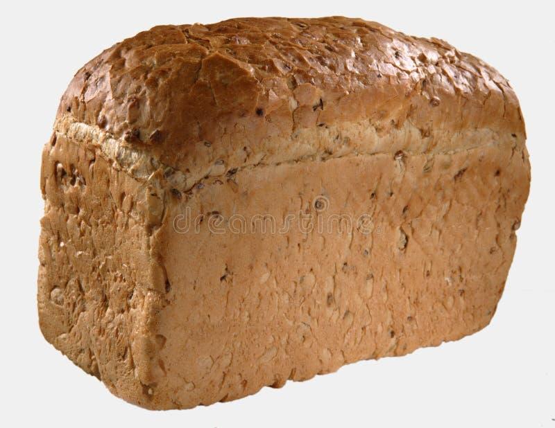 Nytt bakat släntra av bröd royaltyfri foto