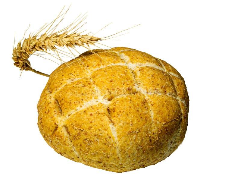 Nytt bakat smakligt bröd med spikeleten av vete Isolerat p? vit bakgrund, n?rbild arkivbild