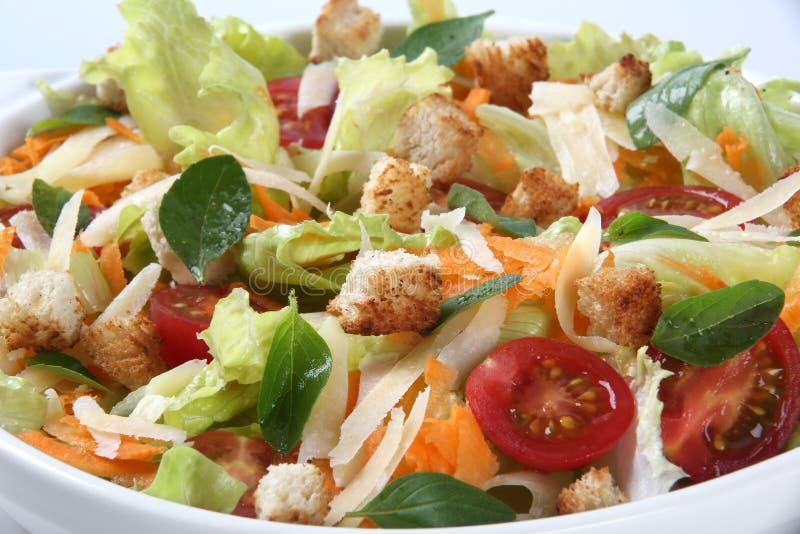 Nytt banta sallad i bunke På white royaltyfria foton