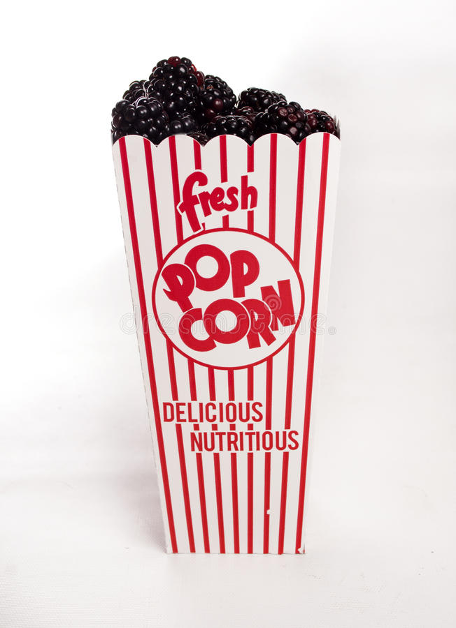 Nytt björnbärspill ut ur popcornbehållaren arkivbilder