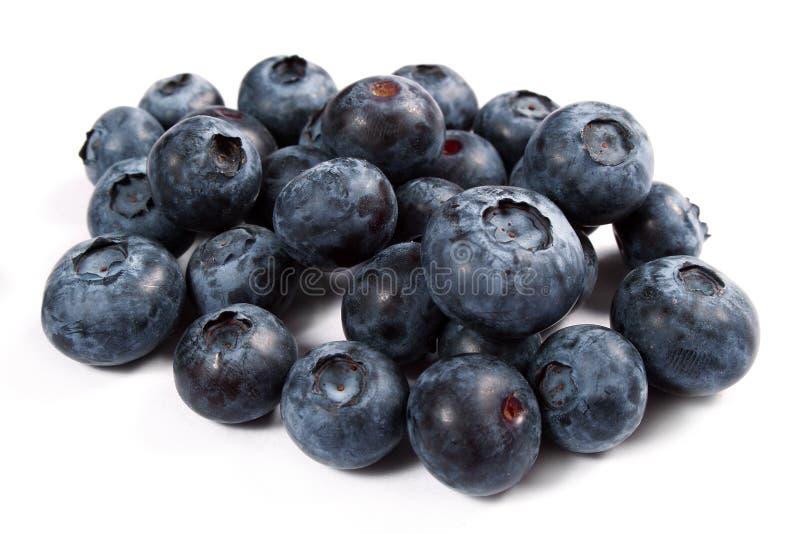 nytt blåbär royaltyfri fotografi