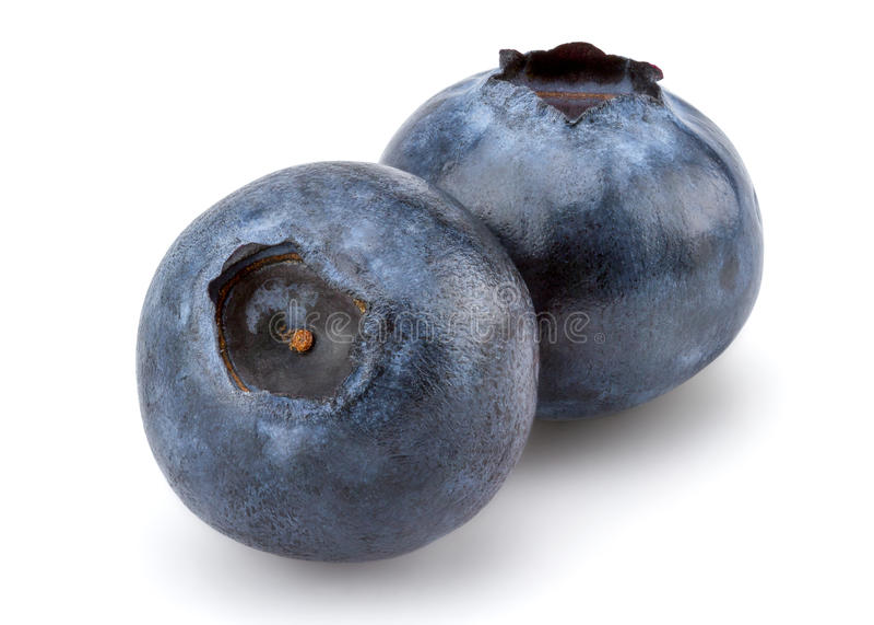 nytt blåbär fotografering för bildbyråer