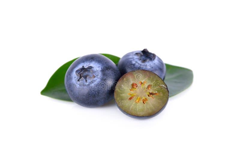 Nytt blåbär för helhet och för halvt snitt på vit bakgrund royaltyfri foto