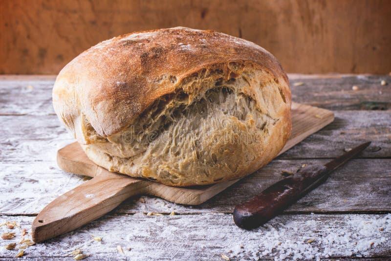 nytt bröd royaltyfri foto