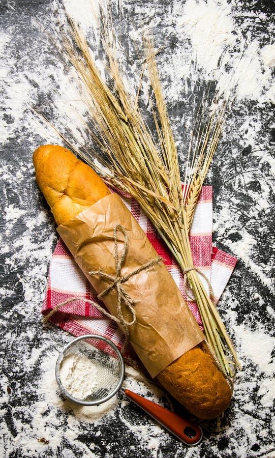Nytt bröd med öron av vete och mjöl arkivfoton