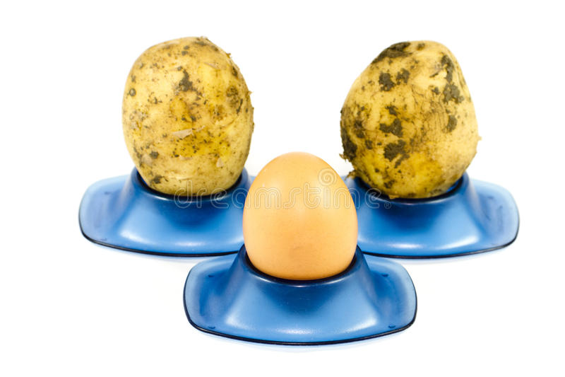 Nytt brunt ägg med potatisar royaltyfria bilder