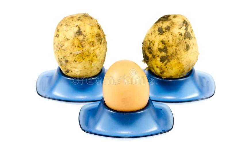 Nytt brunt ägg med potatisar royaltyfri bild