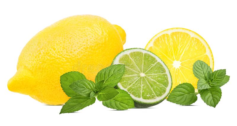 Nytt citron, mintkaramellblad och limefrukt som isoleras på vit royaltyfri fotografi