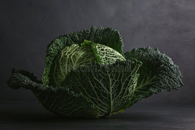 Nytt grönt huvud för savojkål över grå bakgrund Begrepp av royaltyfri foto