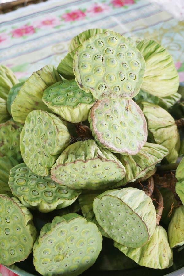 Nytt grönt lotusblommafrö i marknad royaltyfria bilder