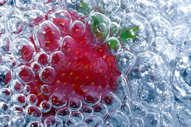 nytt jordgubbevatten royaltyfri foto