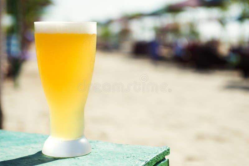 Nytt kallt öl i ett exponeringsglas på en varm solig dag ny öl och strand fotografering för bildbyråer