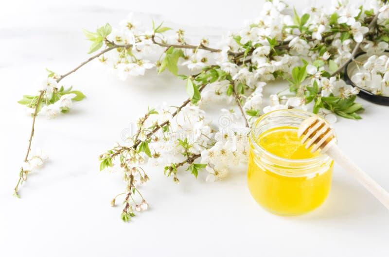 Nytt kan honung i kruset, blomningfilialer p? vit yttersida V?rtid och ny samlad honung royaltyfri foto