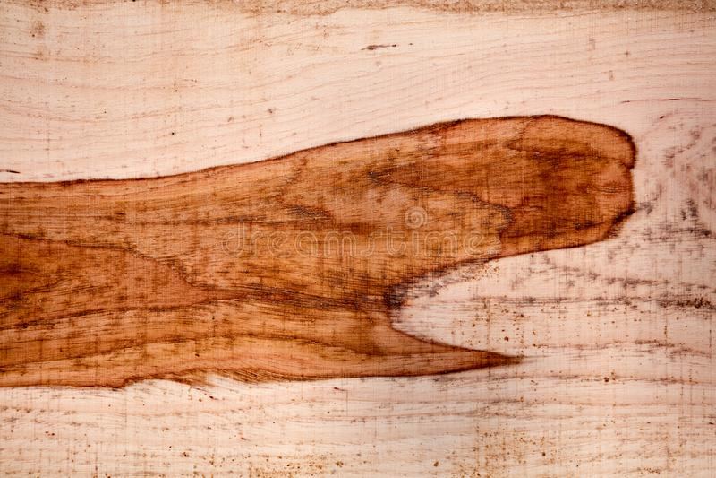 Nytt klipp och malde wood textur royaltyfri foto