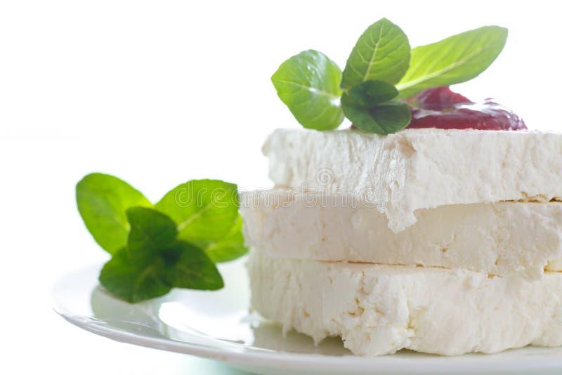 Nytt mjölka ost med driftstopp royaltyfria bilder