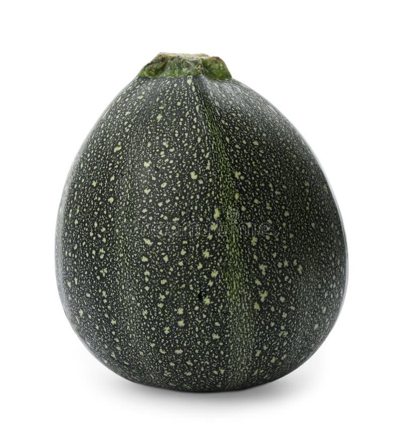 Nytt moget mörkt - isolerad grön zucchini arkivfoto
