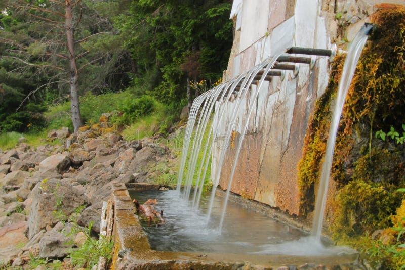 Nytt och kallt vatten för drink i en varm dag arkivbilder