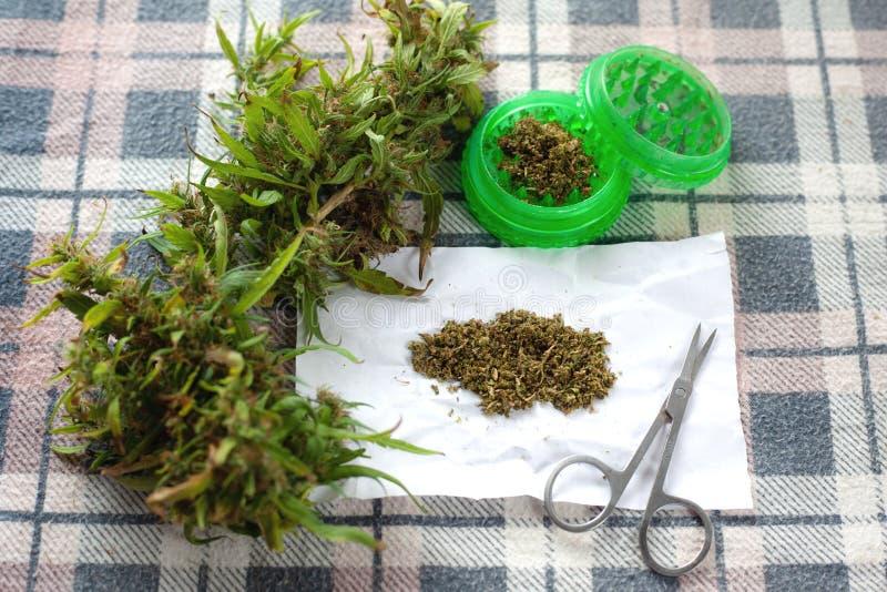 Nytt ogräs som avlöser spänning och som byter ut lyckodroger marijuana som röker tillbehör royaltyfri bild