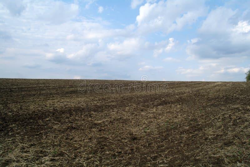 Nytt plogat fält i den klara våren royaltyfria foton