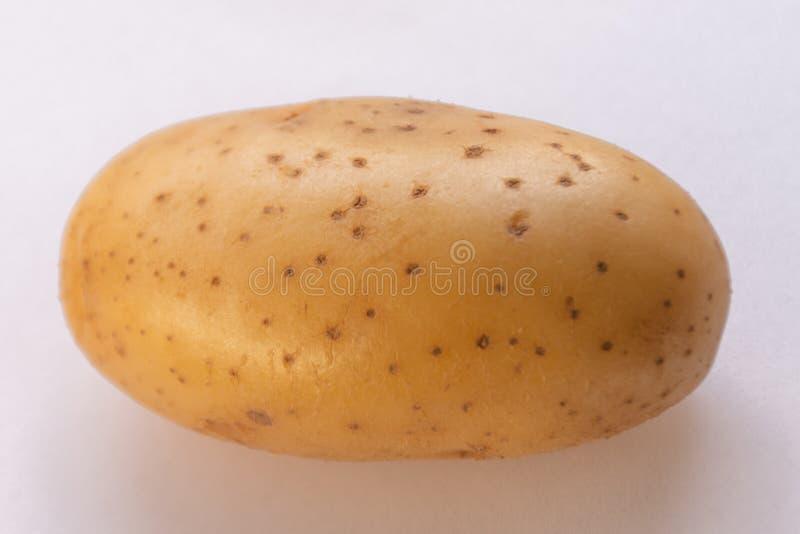 Nytt potatishuvud som kan tas från en variation av matlagning fotografering för bildbyråer
