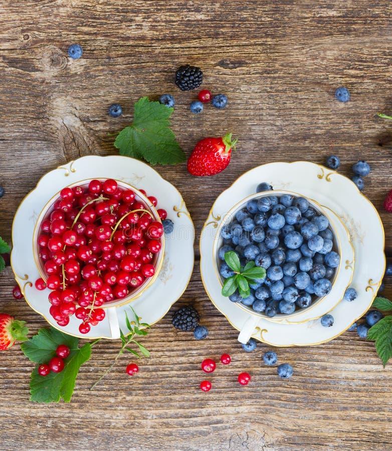 Nytt röd vinbär och blåbär royaltyfria foton