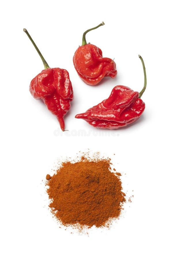 Nytt rött skorpionchilipeppar och chilipulver arkivfoto