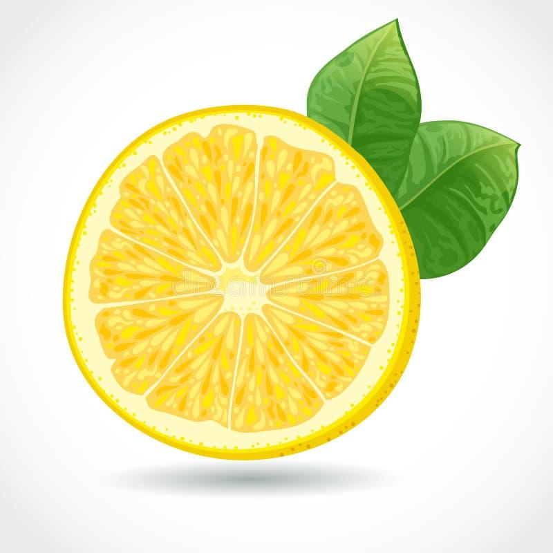 Nytt saftigt lappar av citronen   royaltyfri illustrationer