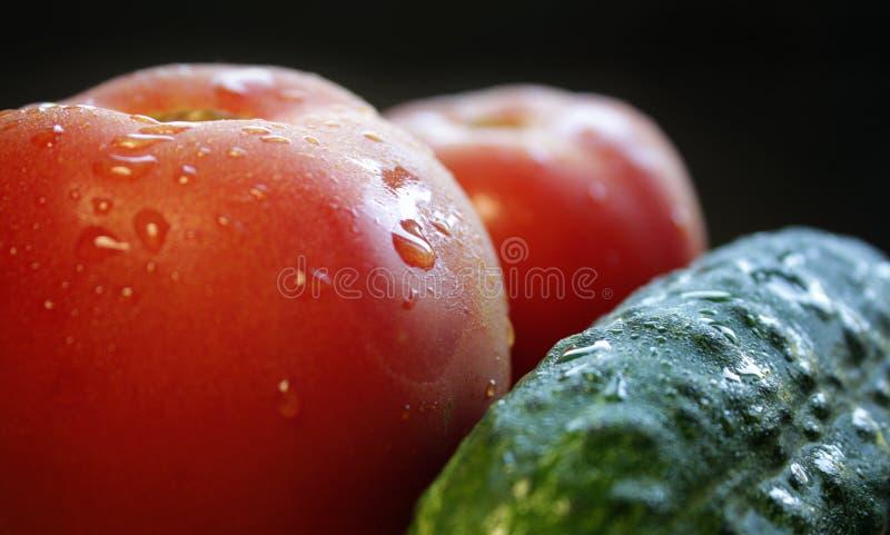 nytt skivad gurka och tomat arkivfoto
