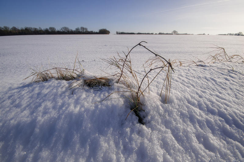 Nytt snöfall i suffolken arkivbild