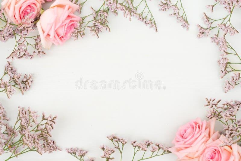 Nytt steg blommor royaltyfria foton