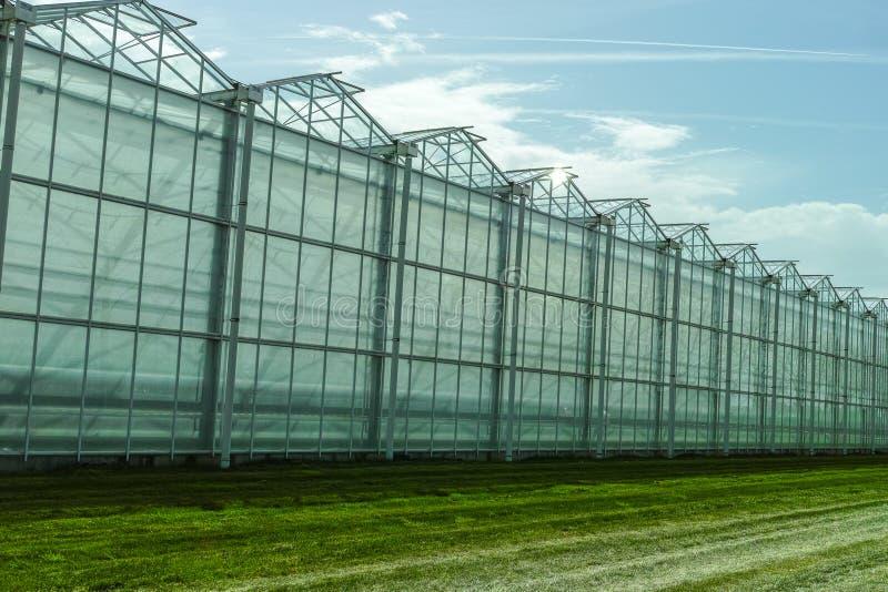 Nytt tomt stort växthus, sikt utanför med blå himmel arkivbilder