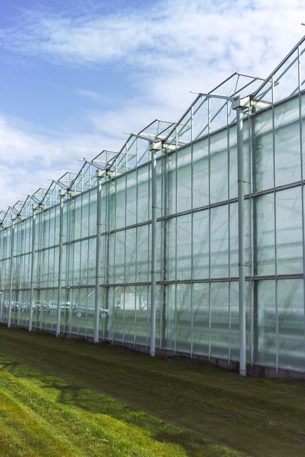 Nytt tomt stort växthus, sikt utanför med blå himmel royaltyfri fotografi